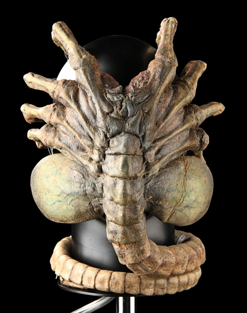alien vs predator facehugger - photo #36