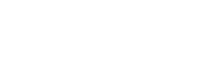 The Ballad of Buster Scruggs - Auction
