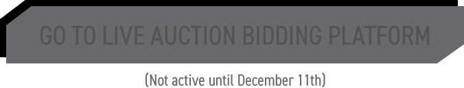 GO TO LIVE AUCTION BIDDING PLATFORM - Not active until DECEMBER 11TH