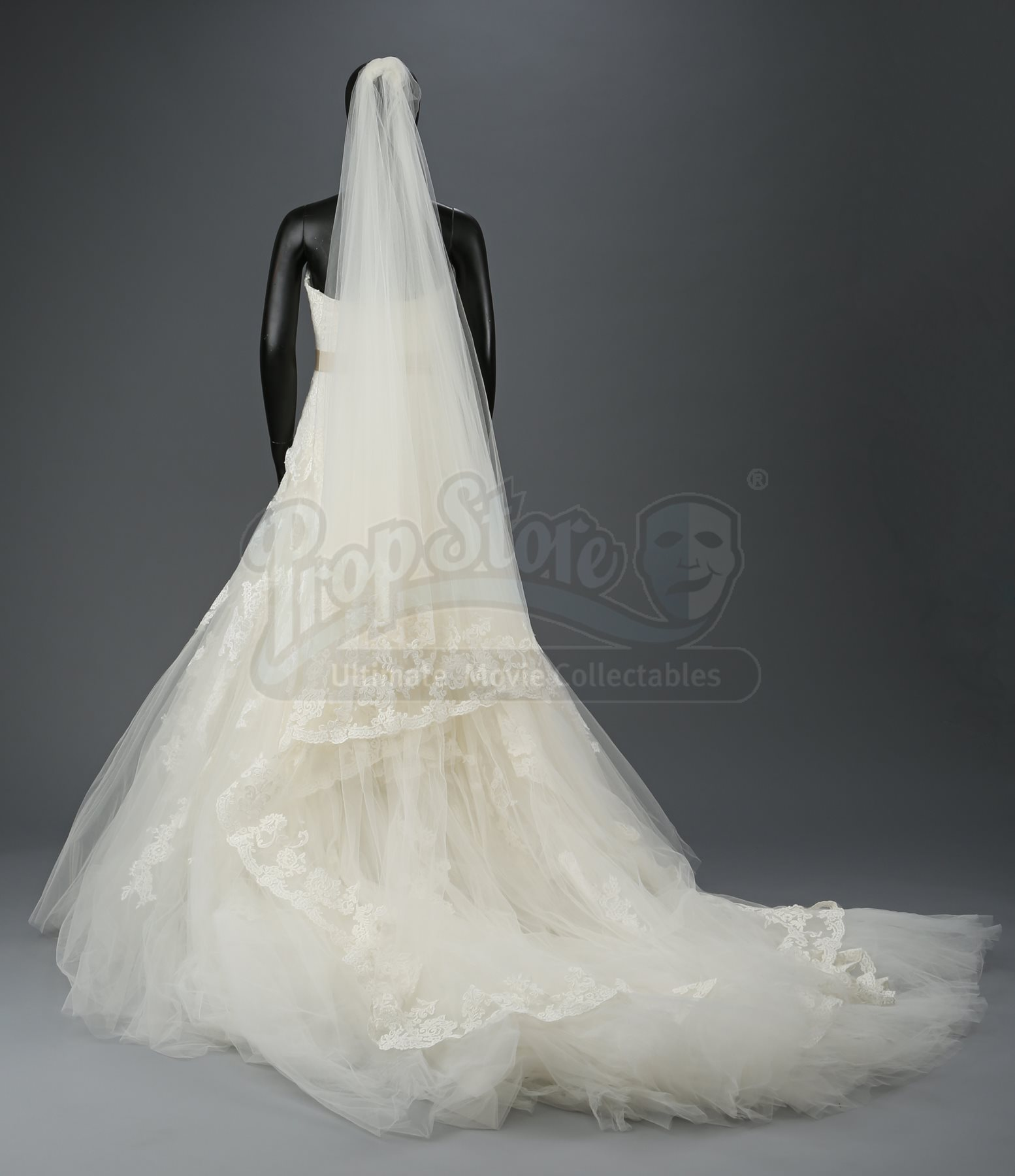 Bella Swan S Nightmare Wedding Dress And Veil Current Price 1400