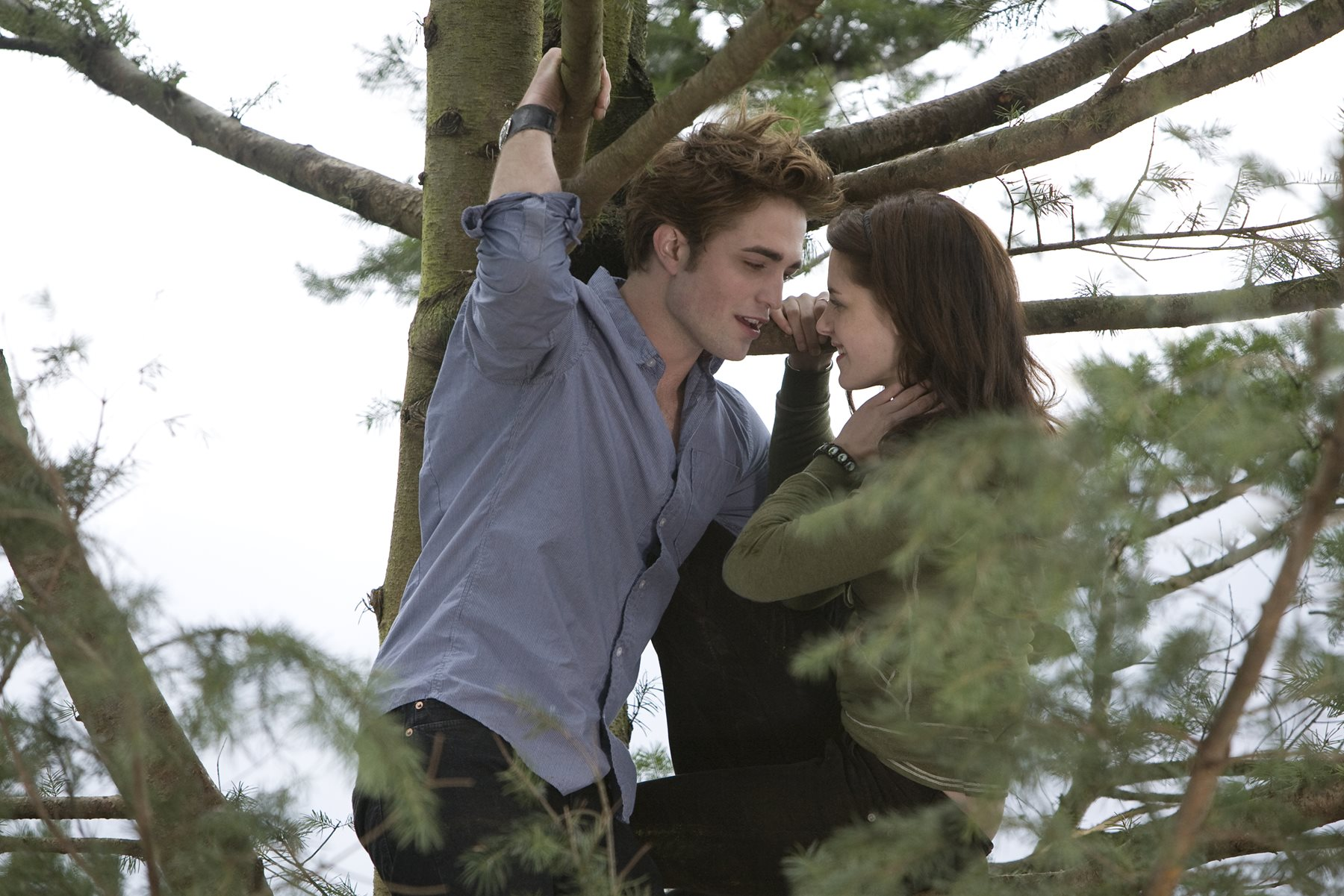Bella swan s cullen house dinner shirt and sweater for Twilight house price