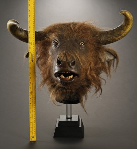 Chronicles_of_Narnia_Prince_Caspian_Minotaur_Head_scale