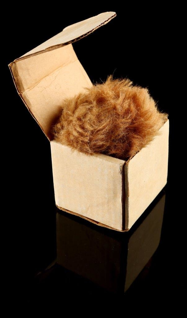 59177_Star_Trek_The_Original_Series_Tribble_With_Lincoln_Enerprises_Box_2