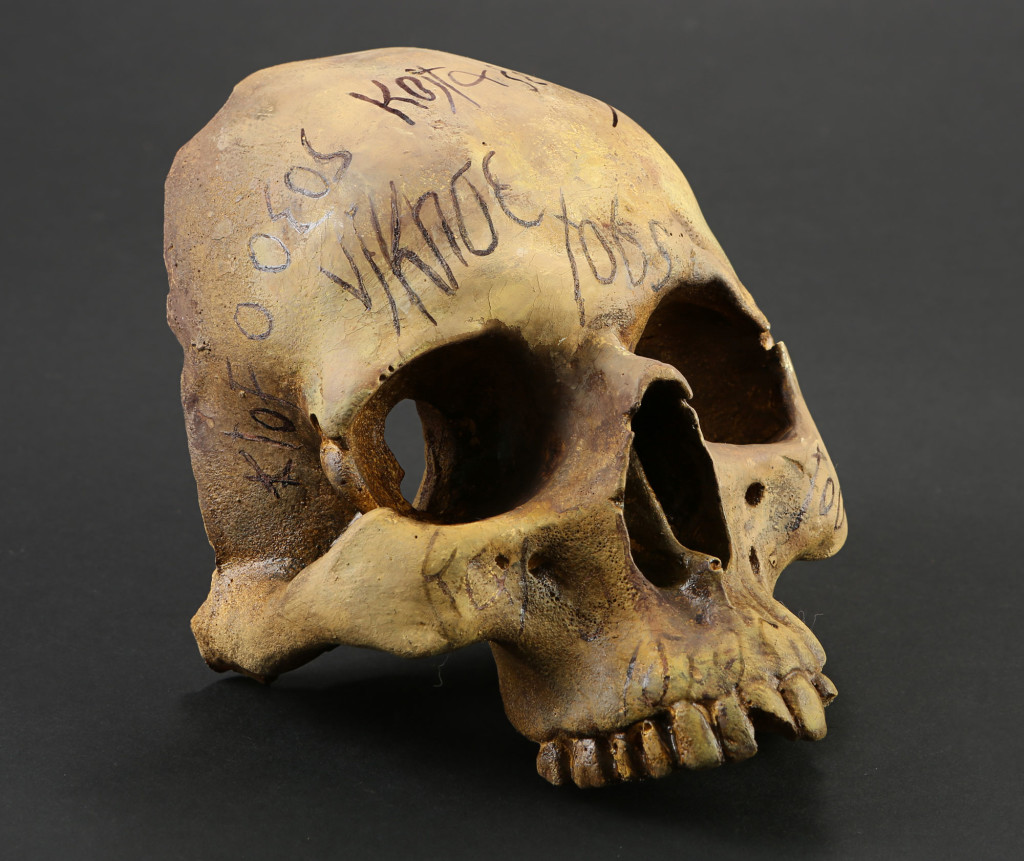 72546_Skull-Relic-with-Writing_1